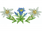 Enzian und Edelweiss
