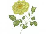 Blume gelb mit Knospe