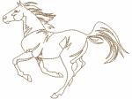 Pferd Umriss