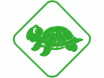 Schildkröte 4