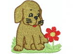 Hund 4