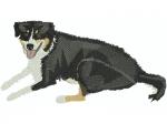 Hund 7