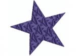 Stern 5