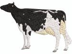schwarz-weisse Kuh